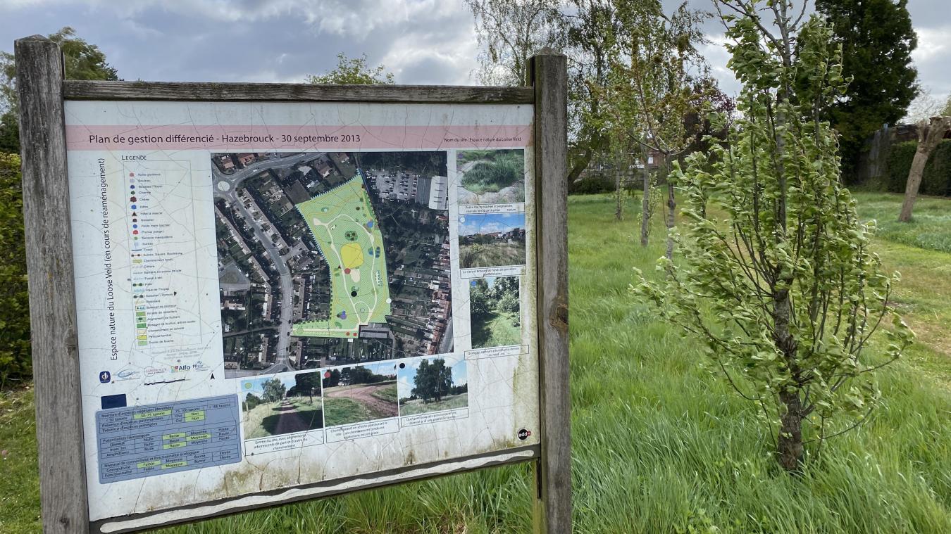 hazebrouck-:-quels-sont-ces-parcs-que-la-ville-veut-ouvrir-ou-creer-d'ici-2026?
