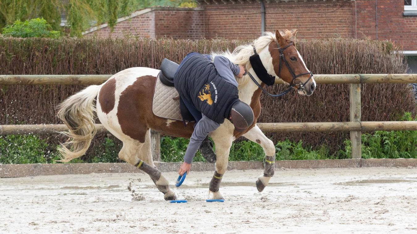 saint-jans-cappel:-les-cavaliers-de-la-rose-des-vents-formes-par-un-crack-du-pony-games