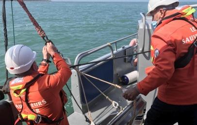 gravelines:-les-groseilles-de-mer,-un-veritable-«poison»-pour-la-centrale-nucleaire