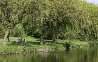 grande-synthe:-le-parc-du-moulin,-oasis-rafraichissante-et-pleine-de-vie