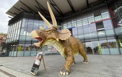 coudekerque-branche:-des-dinosaures-et-un-ete-sous-le-signe-de-«coud-lanta»