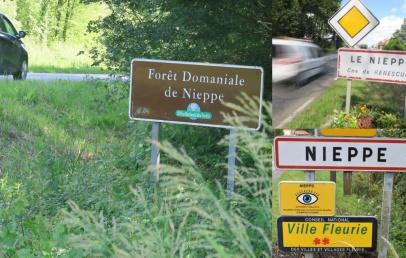 la-foret-de-nieppe,-nieppe,-le-nieppe,-aucun-lien-mais-des-racines-communes
